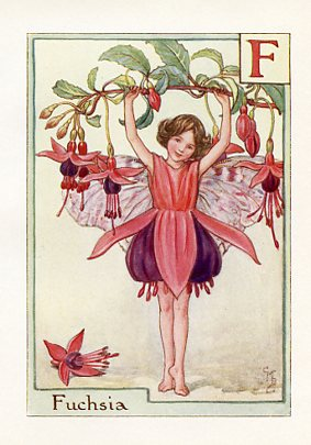 Flower Fairy Alphabet