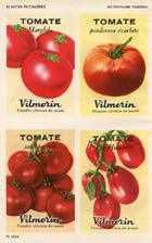 French Vegetable Prints