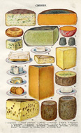 Cooking Print - Cheese (No. 60791202)