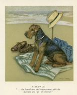 Dog Prints - Airedale (No. 61220006)