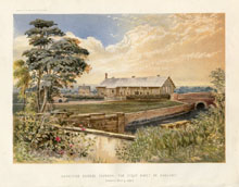 Dairy Farming Prints - Cheese Factory (No. 22210014)