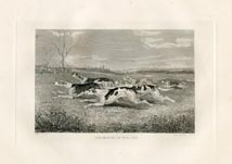 Fox Hound Print (No. 30060018)