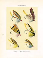 Orvis Fishing Flies Print (No. 30470002)