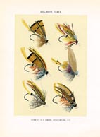 Orvis Fishing Flies Print (No. 30470003)