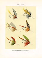 Orvis Fishing Flies Print (No. 30470007)