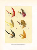 Orvis Fishing Flies Print (No. 30470009)