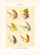 Orvis Fishing Flies Print (No. 30470012)