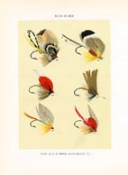 Orvis Fishing Flies Print (No. 30470024)