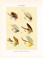 Orvis Fishing Flies Print (No. 30470025)