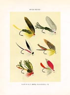 Orvis Fishing Flies Print (No. 30470026)