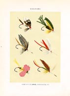 Orvis Fishing Flies Print (No. 30470028)