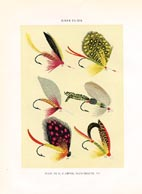 Orvis Fishing Flies Print (No. 30470029)