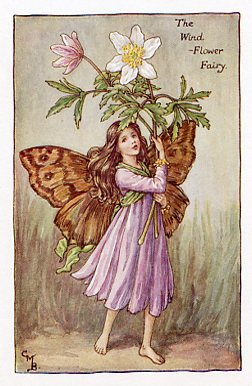 Flower Fairies of the Spring Prints