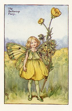 Flower Fairies of the Summer Prints