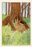 Peter Rabbit Print (No. 70740001)