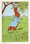 Peter Rabbit Print (No. 70740006)
