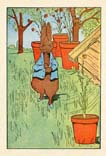 Peter Rabbit Print (No. 70740009)