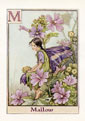 Flower Fairy Print - Mallow (No. 70780013)