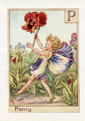 Flower Fairy Print - Pansy (No. 70780016)
