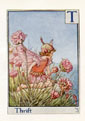 Flower Fairy Print - Thrift (No. 70780020)